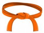 Belt_Orange_160x120