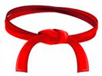 Belt_Red_160x120